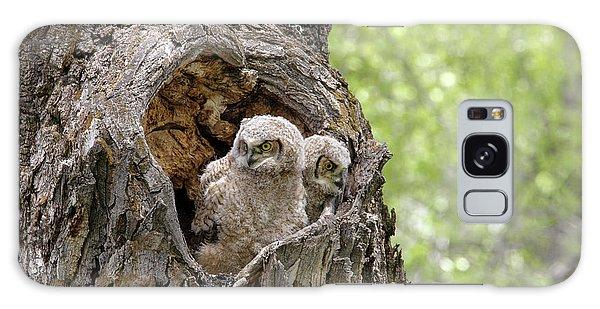Owlets Galaxy Case