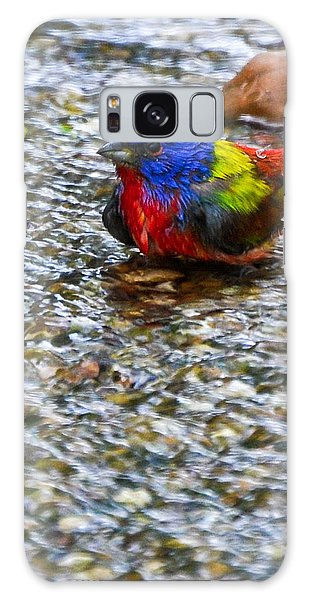 Da223 Painted Bunting Bathtime Daniel Adams Galaxy Case