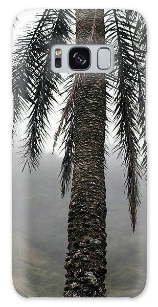 Palm, Koolau Trail, Oahu Galaxy Case
