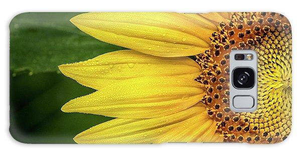 Partial Sunflower Galaxy Case