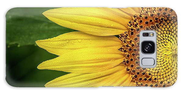 Partial Sunflower Galaxy Case