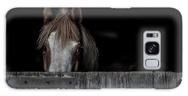 Equine Galaxy Case - Peek A Boo by Paul Neville