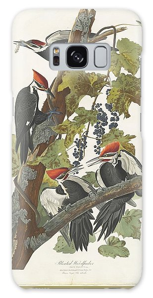 Pileated Woodpecker Galaxy Case