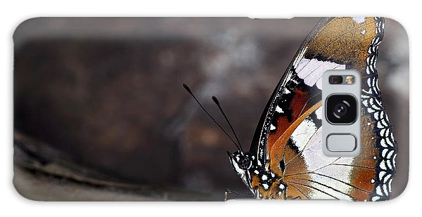 Plain Tiger Butterfly Galaxy Case