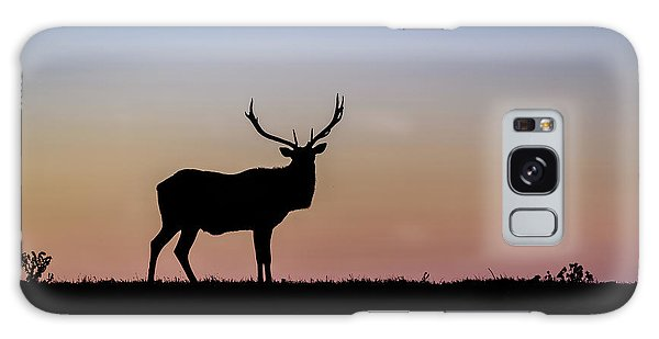 Point Reyes Elk Galaxy Case