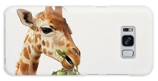 Portrait Of A Rothschild Giraffe  Galaxy Case