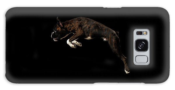 Dog Galaxy S8 Case - Purebred Boxer Dog Isolated On Black Background by Sergey Taran