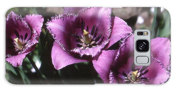 Purple Flowers Two  Galaxy Case