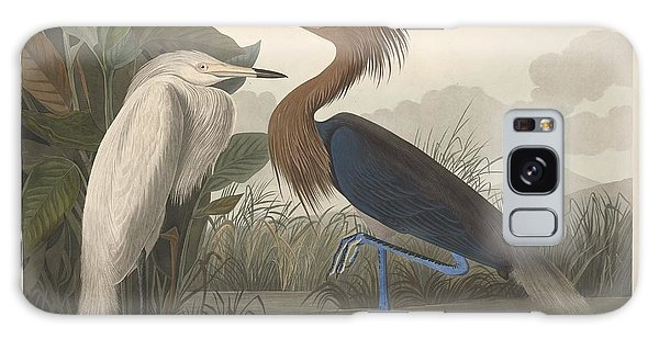 Ibis Galaxy S8 Case - Purple Heron by Dreyer Wildlife Print Collections