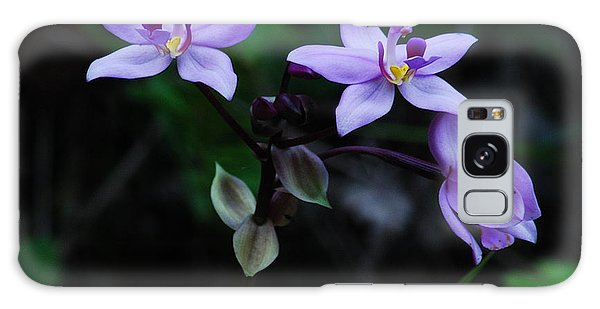 Purple Orchids 2 Galaxy Case by Michael Peychich