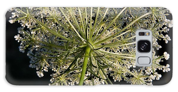 Queen Annes Lace Galaxy Case