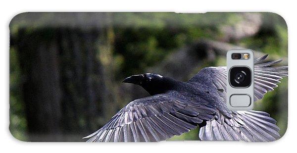Raven Flight Galaxy Case