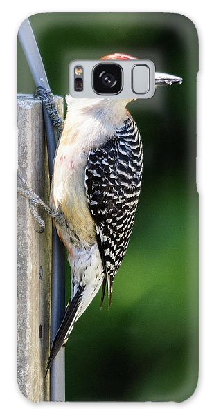 Red-bellied Woodpecker Galaxy Case
