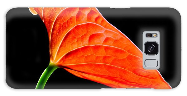 red Lily blossom Galaxy Case by Werner Lehmann