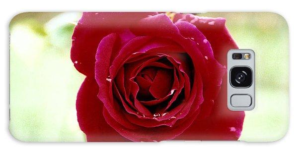 Red Rose Galaxy Case by Martina Fagan
