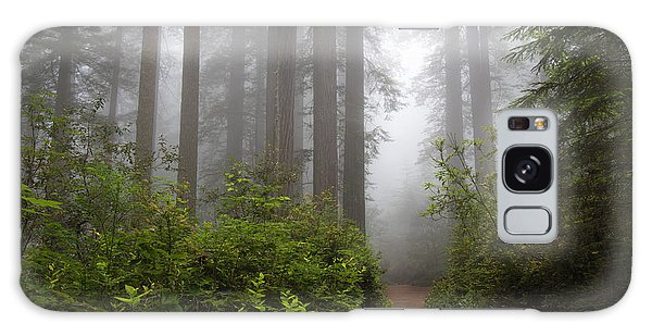Redwood Grove Galaxy Case