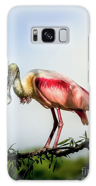 Roseate Spoonbill On Limb Galaxy Case by Robert Frederick
