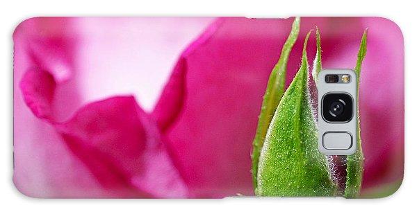 Budding Rose Galaxy Case