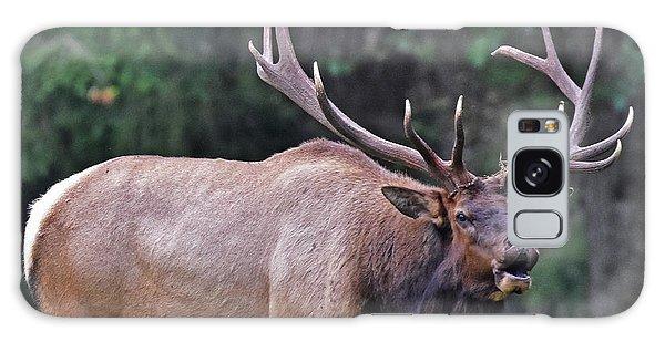 Royal Roosevelt Bull Elk Galaxy Case