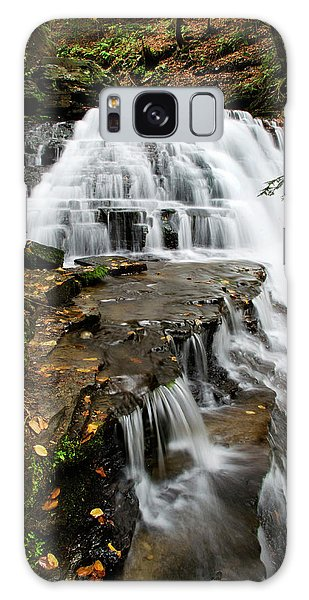 Salt Springs Waterfall Galaxy Case