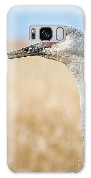 Sandhill Crane Galaxy Case by Chris Dutton