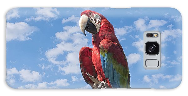 Scarlet Macaw Galaxy Case