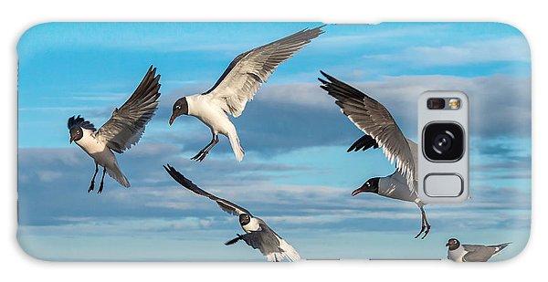 Seagulls In Flight Galaxy Case