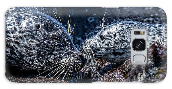 Seal Pup With Mom Galaxy Case