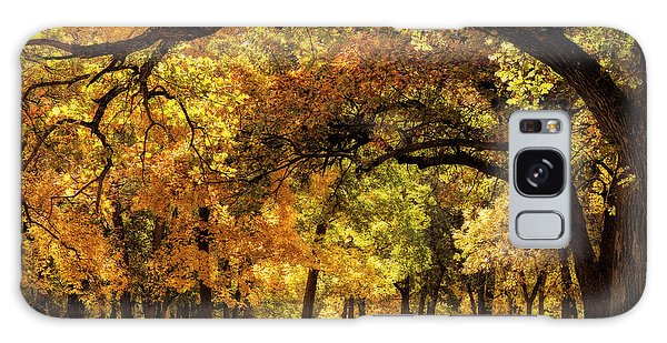 Picnic Table Galaxy Case - A Sheltered Spot by Scott Bean