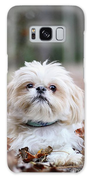 Shih Tzu Galaxy Case