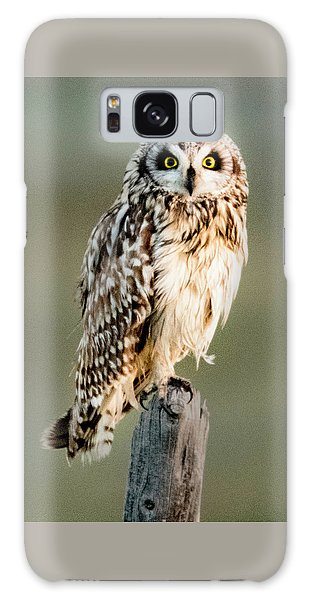 Short Eared Owl Galaxy Case
