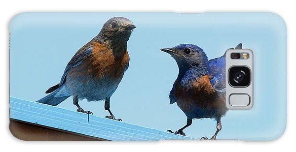 Bluebird Galaxy Case - Showing Off by Mike Dawson