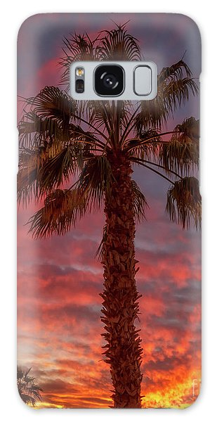 Silhouetted Palm Tree Galaxy Case by Robert Bales
