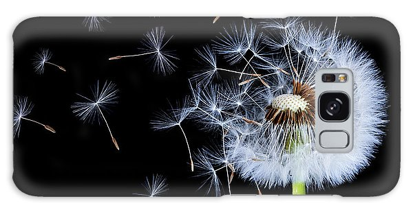 Silhouettes Of Dandelions Galaxy Case