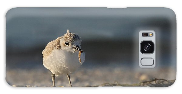 Snowy Plover Galaxy Case by Meg Rousher