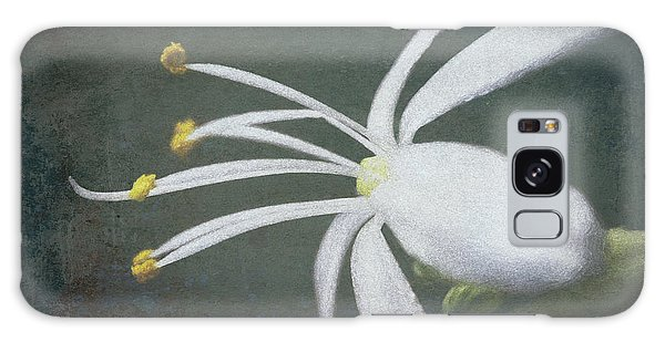 Spider Plant Flower II Galaxy Case
