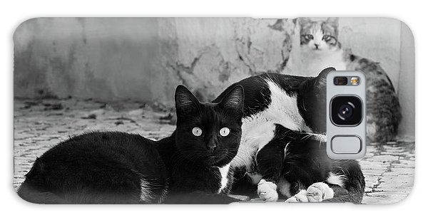 Galaxy Case featuring the photograph Street Cats - Portugal by Barry O Carroll