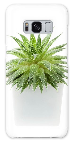 Galaxy Case featuring the photograph Succulent Plant by Elena Elisseeva