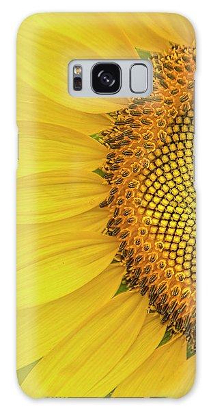 Sunflower Petals Galaxy Case