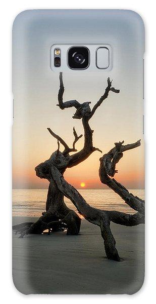 Sunrise On Driftwood Galaxy Case