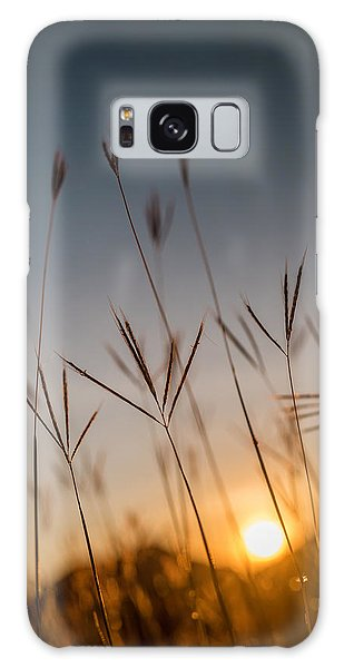 Sunset Grass Galaxy Case