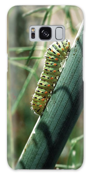 Swallowtail Caterpillar Galaxy Case