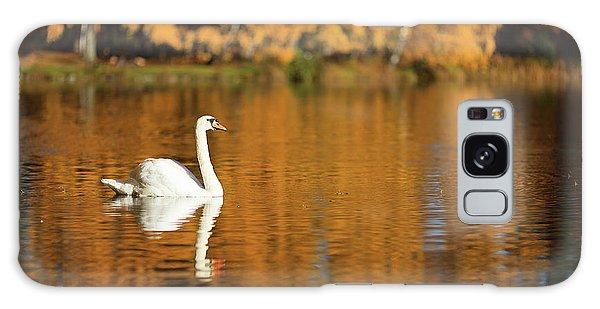 Swan On A Lake Galaxy Case