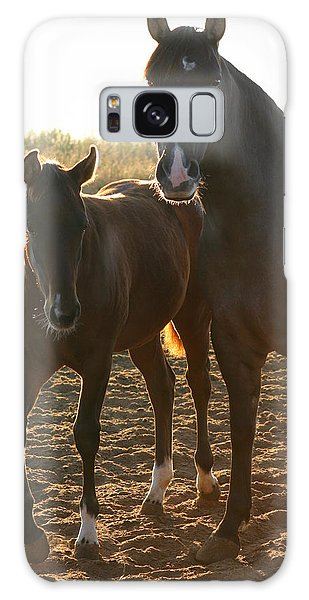 Texas Mare  Galaxy Case