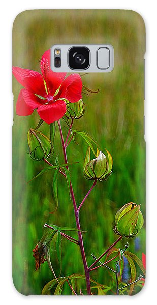 Texas Star Hibiscus Galaxy Case