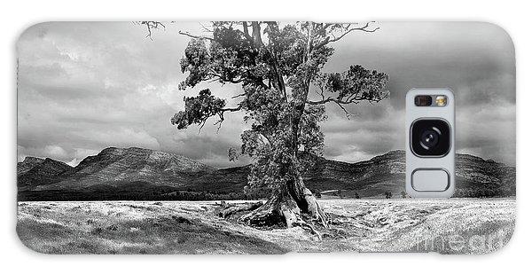 The Cazneaux Tree Galaxy Case by Bill Robinson