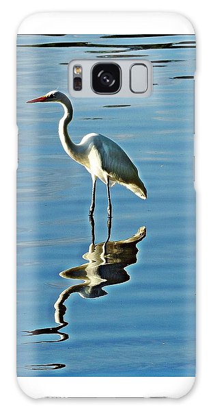 The Egret Galaxy Case