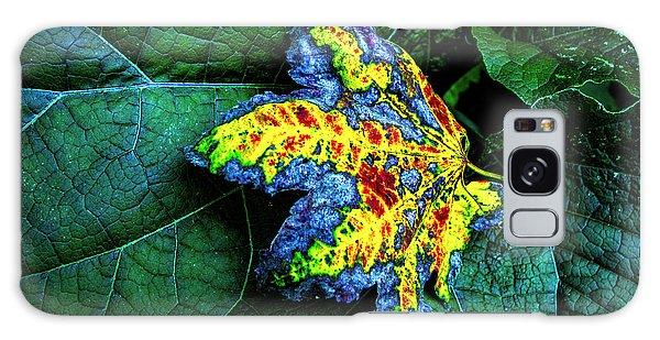 The Leaf Galaxy Case