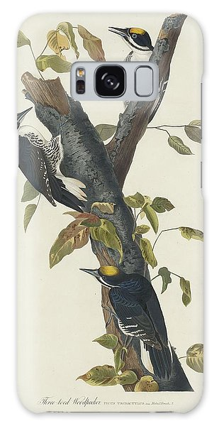 Three-toed Woodpecker Galaxy Case by Dreyer Wildlife Print Collections