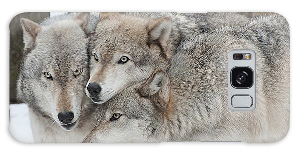 Three Wolves Are A Crowd Galaxy Case